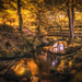 DSC_8232-Edit by Stuart Lilley Photography