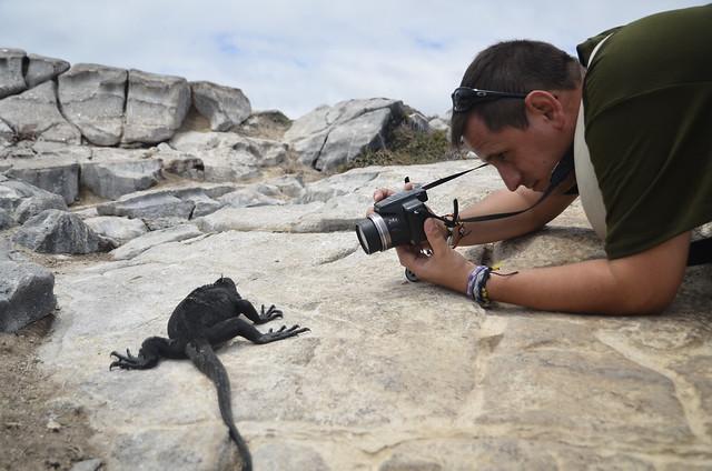 Sele fotografiando una iguana marina en isla Plaza Sur (Galápagos)