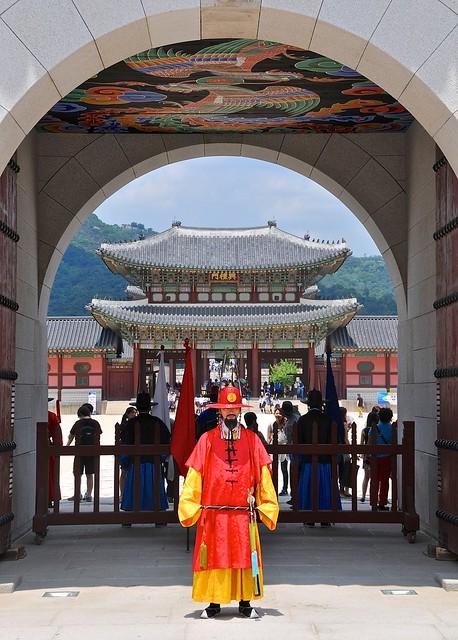 Palace Guard under gate