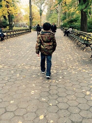 Central Park on Veteran's Day 2014