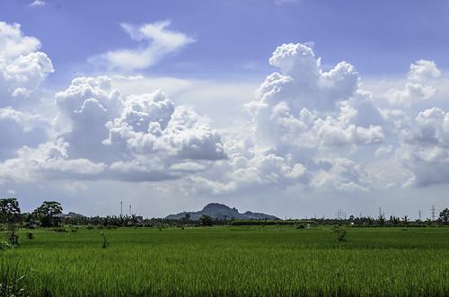 blue light sky mountain tree green nature landscape nikon rice daytime clou d5100