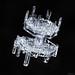 Snowflake-a-Day #48 by Don Komarechka