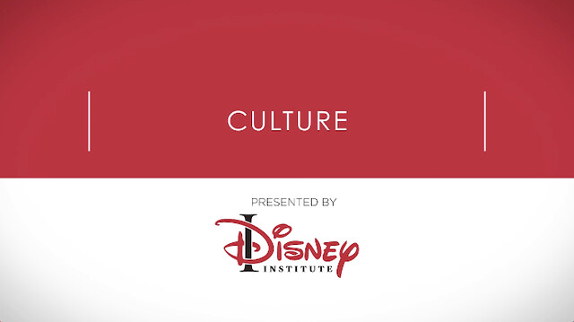 Disneys organizational behavior