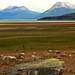 Patagonia IMG_9385 by pr.cuenod