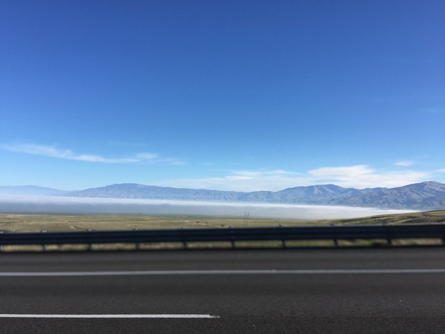 Low fog at the Grapevine