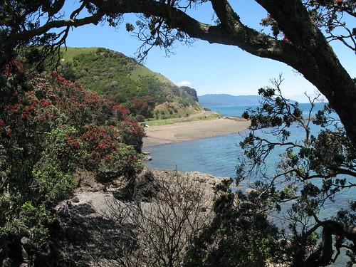 New Zealand 255