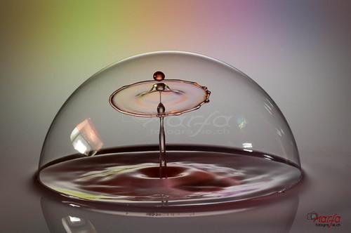 soap bubble drop