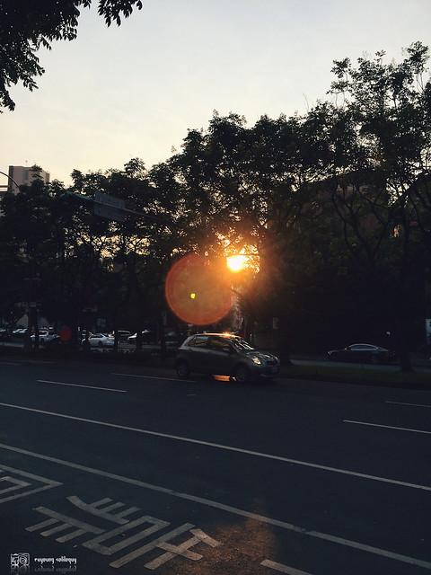 iPhone6_Plus_Photo_02