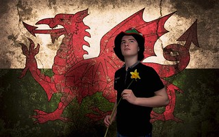 60/365 - Happy St. David's Day
