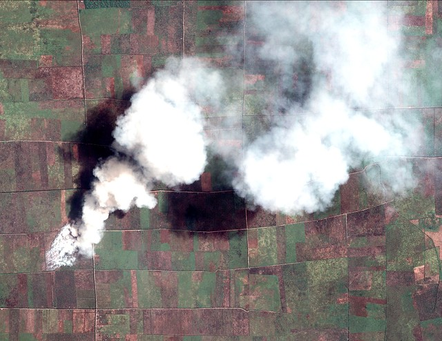 Forests and Fires from the Sky: High-Resolution Satellite Imagery