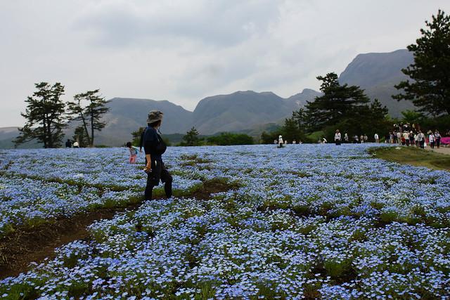 2014-05-04_01020_九州登山旅行.jpg