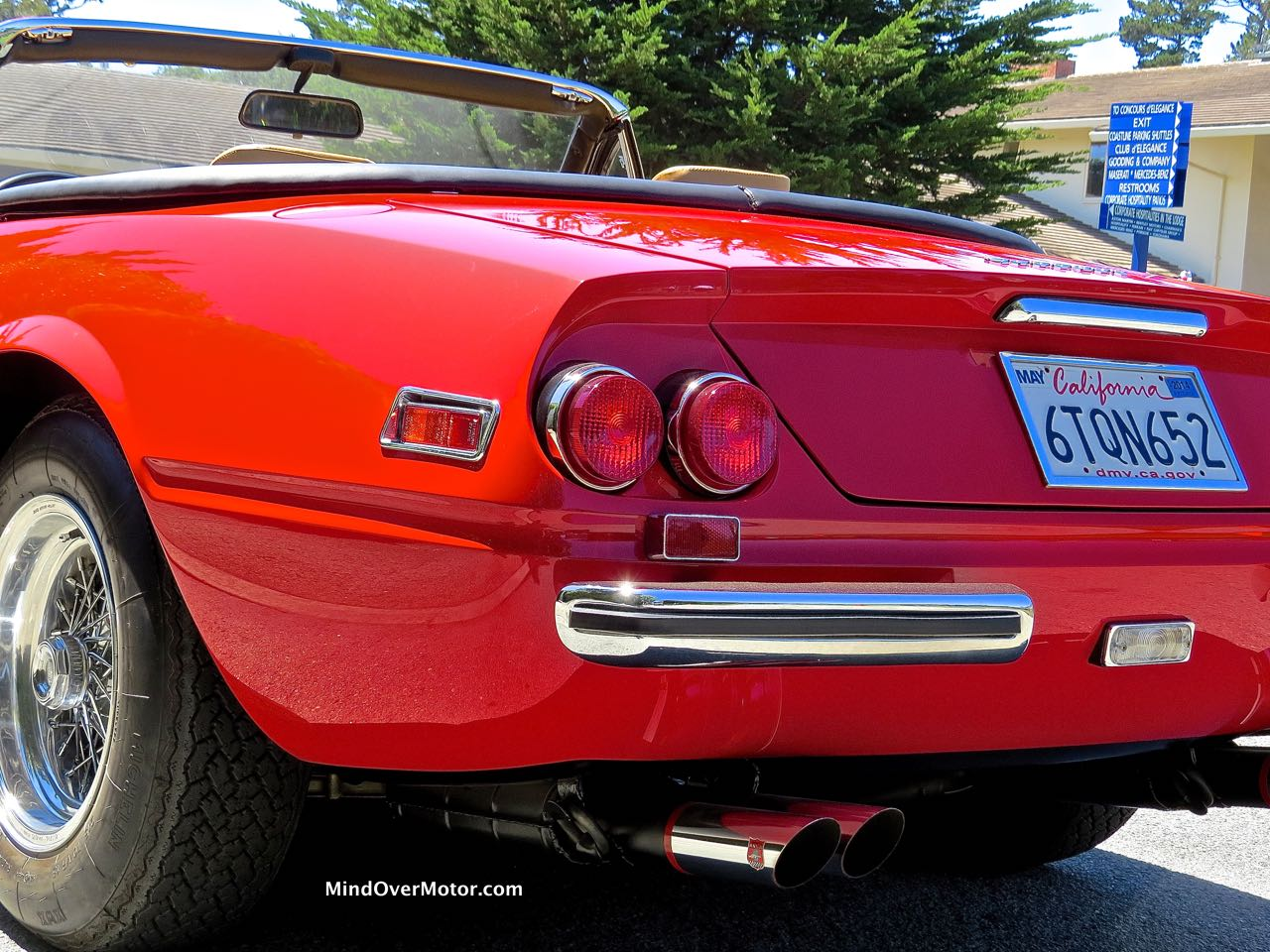 Ferrari 365 GTS:4 Rear Detail