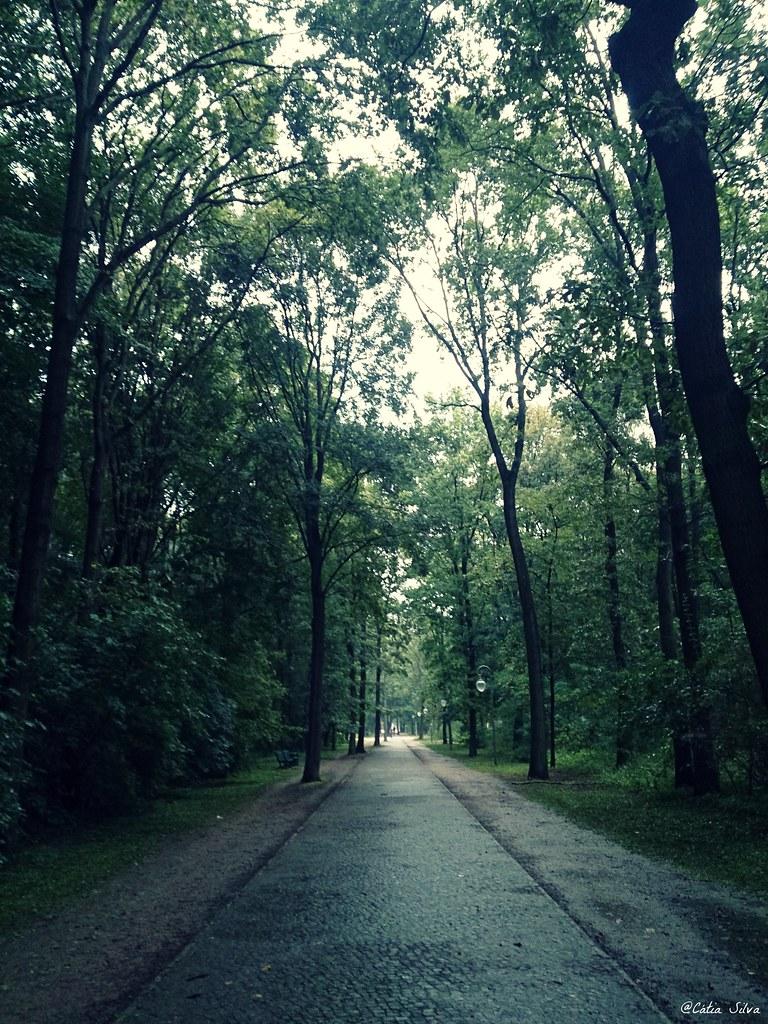 Around Berlin (4) Tiergarten