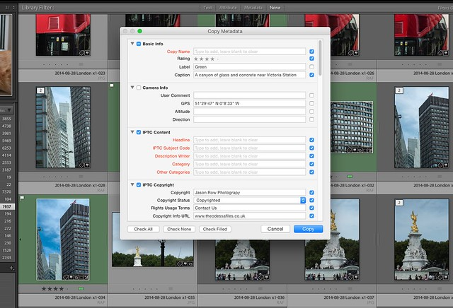 5 Ways to Speed Up Your Lightroom Workflow