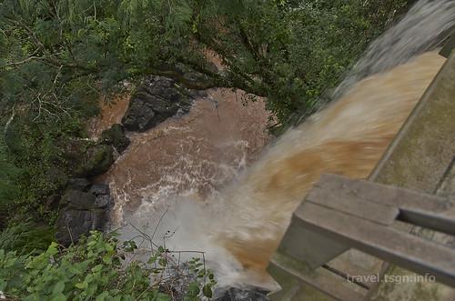 【写真】2015 世界一周 : イグアスの滝・アッパートレイル/2021-03-24/PICT7435