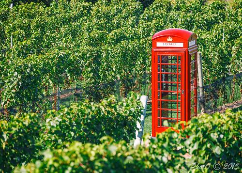 Luckett Vineyards Call Box