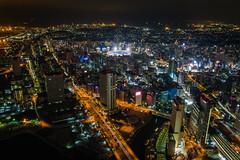 View from Sky Garden Observatory, Yokohama Landmark Tower