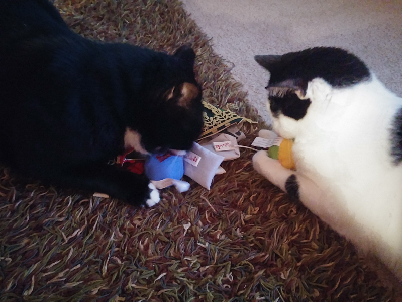The Cat Life: Stockings