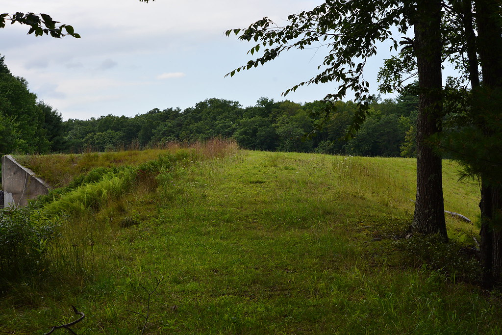 Pocono woodlands milford pa