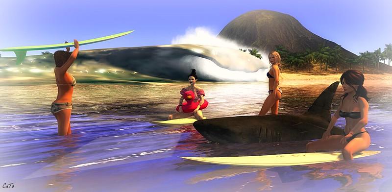 Surfin III - The Dudettes