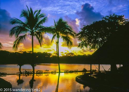 reflection 120 mamiya film sunrise mediumformat costarica swimmingpool tortuguero filmscan mamiya7ii tortugalodgeandgardens wildernesstraveltour