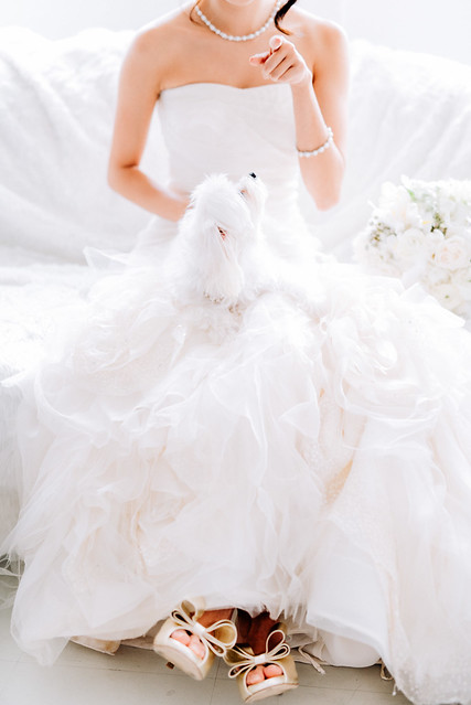 White wedding, style shoot, Multifolds, Tangyong Makeup, Heaven in Wild Flower, pure, flowers, white on white, wedding, jewellery, Melissa Celestine Koh, Truly Enamoured, Tiffany and Co Jewellery, white dog
