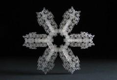 Snowflake of the Owl