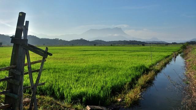 Good Morning Kinabalu!