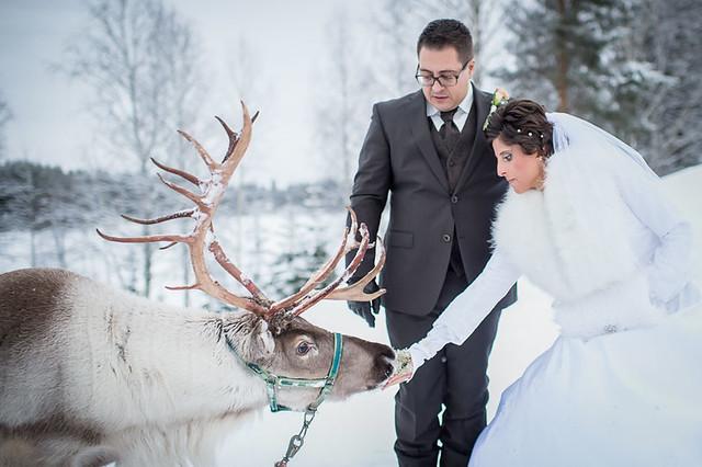 Safartica Lapland Wedding photo