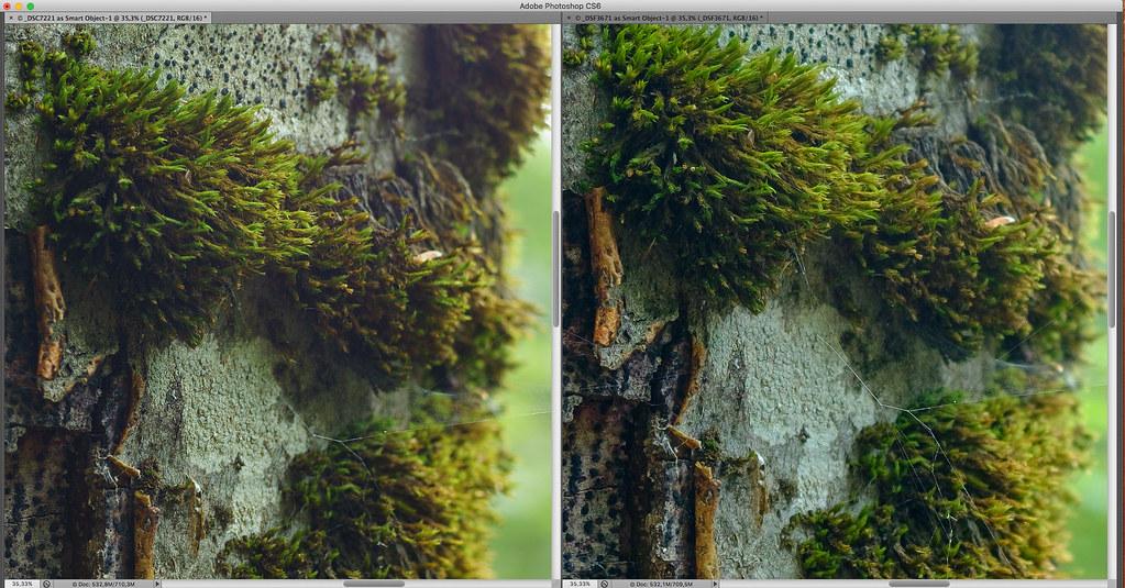 Sony_A7r-vs-Fujifilm_X-T10_04