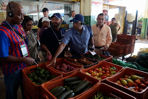 The MIOA members also toured the local wholesale market, Centrais de Abastecimento do Distrito Federal S.A (CEASA-DF), in Brasilia, Brazil. Dr. Luis Palmer, Chief of the International Reports Section of AMS Fruit and Vegetable Programs Market News (second from right with blue shirt) tours the market with MIOA members. Photo Courtesy of Francisco Stuckert, CONAB.