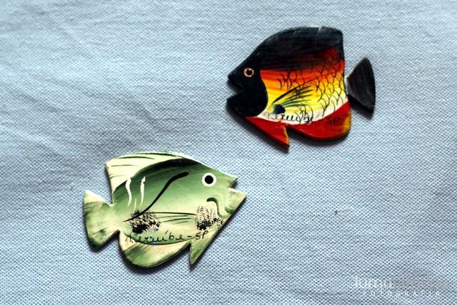 .fish.