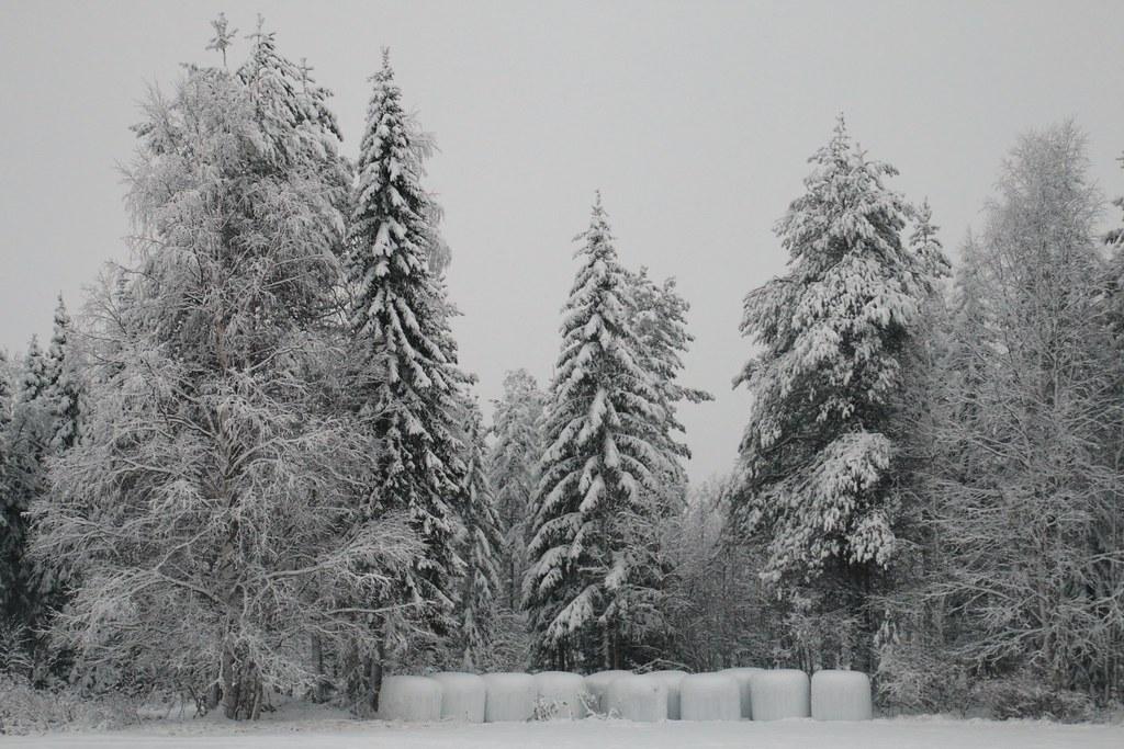 Finland174