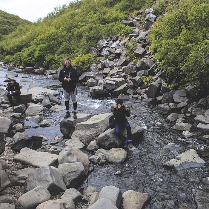 Iceland_Spiegeleule_August2014 059