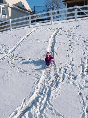 No sled