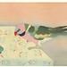 Japanese Flower and Bird Art posted a photo:Japanese art print by Toyonari Yamamura (1885-1942)