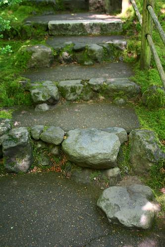 15_path6