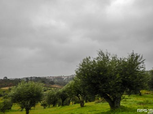 (2015.02.02) Portugal 001