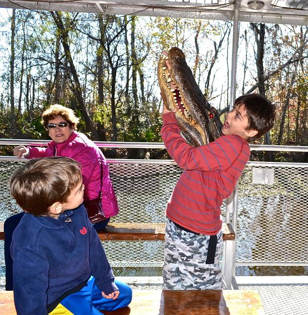 alligator fun - swamp tours new orleans