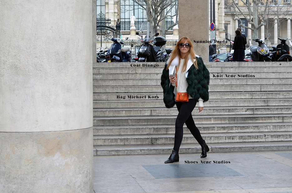 POSE-rachelzoe-paris-3.1