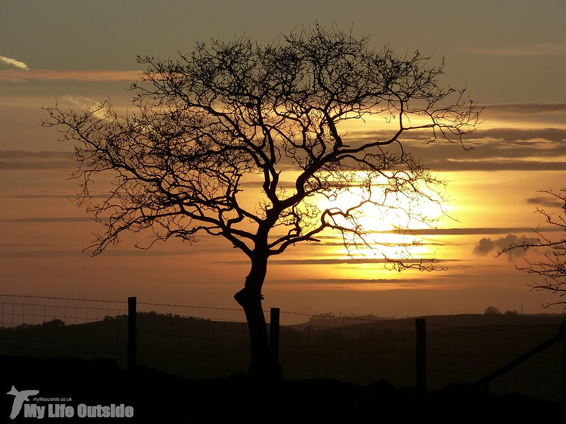 P1110224 - Sunset