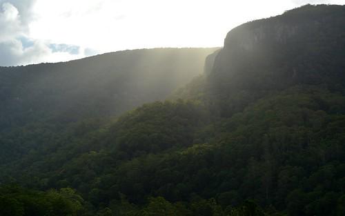 summer sunlight mountain forest landscape shadows australia queensland australianlandscape sunbeams afternoonlight sequeensland afternoonlandscape nerangrivervalley