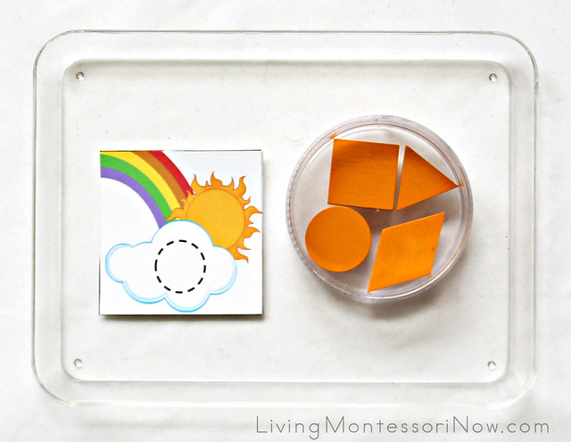 Rainbow Shape Tray