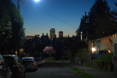 Madrona at Dusk:  Seattle Skyline From 32nd and E. Spring