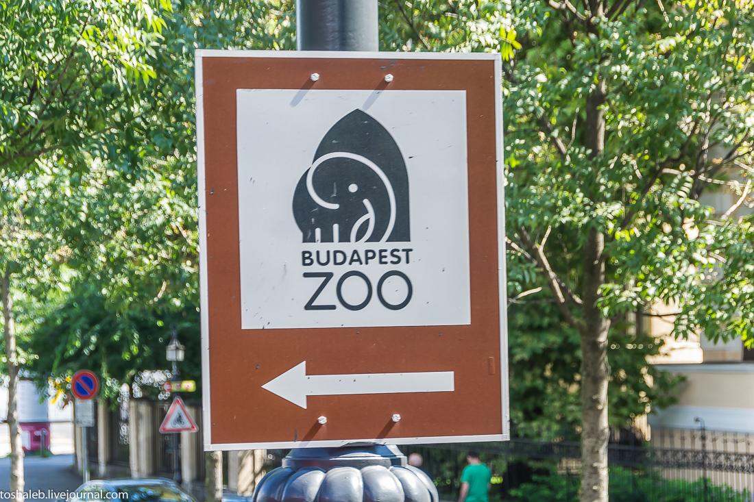 Будапешт_1-14