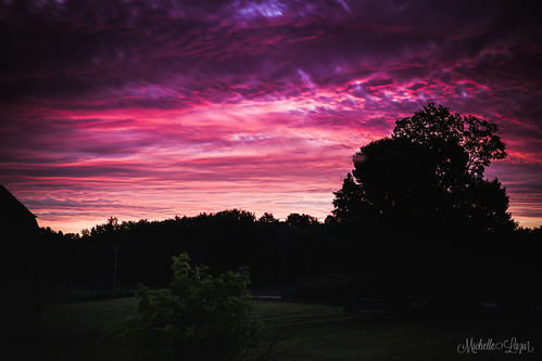 Laurel Mt Llewellins posted a photo: