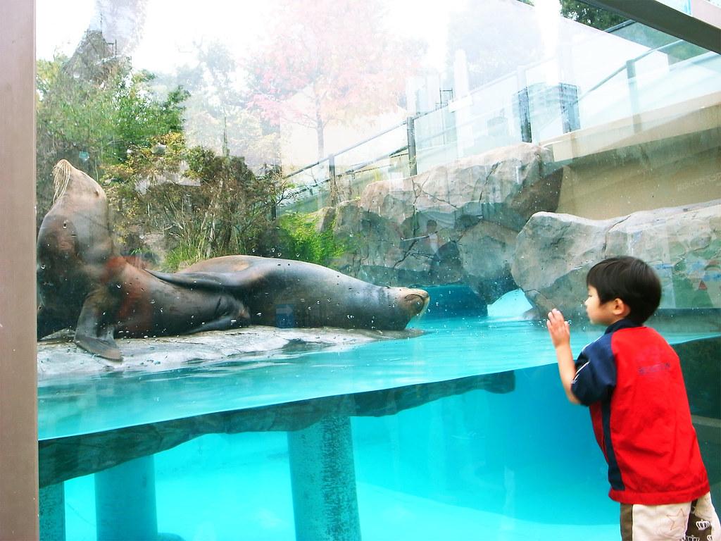上野動物園と落語鑑賞と