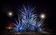 CHIHULY Blue