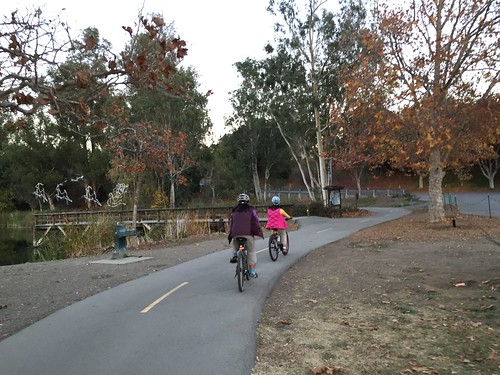 Fall cycling at Vasona Park