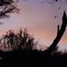 Un atardecer en el Chilarejo por Jesús Aceves-Loza